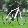 良質MTBの電気バイク