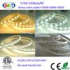 120V SMD 5630 LED 지구 코드 옥외 밧줄 빛 50m/Roll