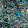 Flor de lana tejida impreso de poliéster tela para vestir (TLD-008)