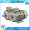 Ie3 0.75kw 1HP Best Squirrel Induction Motor (IE3-80M1-2)