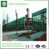 Policarbonato sólido Limpar vidro corrediço de porta única com efeito de estufa E606