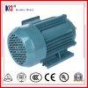 Asynchroner elektrischer Wechselstrommotor für Ventilations-Installation