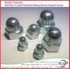 육 견과 M4 & 색칠을%s 가진 둥근 지붕 모자 견과를 위한 스테인리스 모자