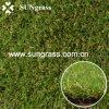 Landscapeか庭またはSwimming Pool (QDS-HG)のための20mm Synthetic Lawn