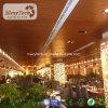 Plafond matériel de décoration intérieure de plafond décoratif de WPC