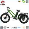 750W 성인을%s 뚱뚱한 Tiye 전기 세발자전거 리튬 건전지 자전거