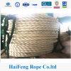 Corda dell'atlante, singola corda composita di nylon del filamento 6-Ply, corda del tendine