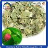 健康食品の製造業者の卸売のロータス葉の茶