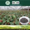 Il carbonio dell'acido pirolegnoso di Kingeta ha basato il fertilizzante composto NPK 18-18-6