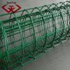 Ячеистые сети Голландии электрические сваренные (TYf-015)