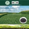 Concime organico NPK 8-6-18 del fertilizzante composto produttivo di Biohar di aumento di Kingeta