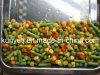 Legumes mistos com alta qualidade