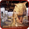 Het binnen Model van de Dinosaurus Animatronic van de Apparatuur van de Speelplaats Aantrekkelijke