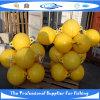 Coltivando gabbia (PC130791)