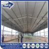Casa de pollo prefabricada de la estructura de acero de China con el sistema que introduce auto