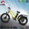 24 인치 성숙한 3 바퀴 Ebike 또는 정면 Suspention를 가진 전기 세발자전거
