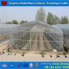 きゅうりのために農業マルチスパンのHydroponicsのフィルムの温室