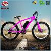 500W電気脂肪質のタイヤ浜の自転車の油圧中断