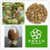 Выдержка плодоовощ 100% чисто естественная Villous Amomum