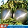 Шлифовальные средства массовой информации АИСИ1045 углеродистая сталь нержавеющая шарик
