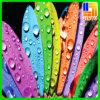 Presente UV feito sob encomenda da promoção da impressão para a decoração