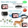 O perseguidor impermeável o mais novo do GPS dos animais de estimação com uma comunicação em dois sentidos D69