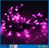 LED de cor de rosa 110V Luzes Fadas 100 LED 10m String