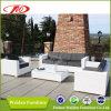 Il sofà esterno elegante del patio ha impostato (DH-833O)