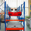 High Density Shuttle Racking System (Pallet Runner)