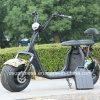 Potente e scooters Ny-E85 com certificado CEE