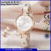 Relógio ocasional da mulher de quartzo da cinta de couro da forma OEM/ODM (Wy-063A)