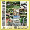 Gris Natural/Negro/Amarillo/Verde/Blanco/Pizarra/Caído de basalto y arenisca/Curbstone/adoquines de granito para jardín/Paisaje/carretera/decorativo