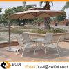 2.7 Couverture extérieure de fer de mètre de duplex de Sun de parapluie de patio de parapluie de jardin de parasol en acier de parasol pour le café