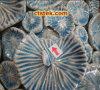 Ceramica/controllo sul posto in-linea dell'assegno di qualità della fabbrica di Pre-Shipment di terzi prodotto di Porcelaine