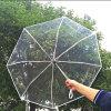 Зонтик Umbrell новой горячей складчатости прозрачный оптовый напольный складывая
