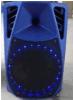 Nuovo altoparlante portatile ricaricabile del carrello di pollice 40W Bluetooth del modello 12 per la riunione esterna