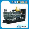 gruppo elettrogeno diesel 700kw/875kVA alimentato da Wechai Engine/alta qualità