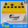 12V28ah tondeuse à gazon avec plus d'application de la batterie pour le marché de la Malaisie