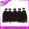 ブラジルのねじれた巻き毛のバージンの毛、3PCS/Lotブラジルの毛の織り方の束、Aliexpress最上質の100%年のRemyの人間の毛髪