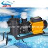 Bomba 380V 7.5HP do ferro de molde do parque da água da piscina da irrigação
