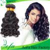 최상 바디 파 Malaysian 인간적인 Virgin 머리 가발