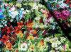 Cotone Stretch Satin Fabric con Digital Print