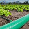 ホースの価格の耐久の供給PVC配達排出はホースを洗浄する