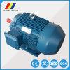 高性能Ye2-180L-4 AC誘導電動機の電動機