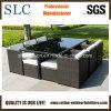アルミニウムフレームの屋外の藤の家具(SC-A7199)