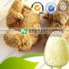Hersteller erstklassige reine Notoginseng Panax Notoginseng Saponine