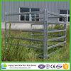 panneau de bétail de 1.8m x de 2.1m et grille normaux de norme de bétail