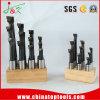 Barras de alesaje inclinadas carburo plástico del soporte 9PCS/Set de la alta calidad 3/8 ''