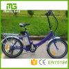Малый электрический велосипед складывая Ebikes с  E-Велосипед дюйма 20 складной с 36V 250W