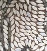 Mattonelle di mosaico madreperlacee delle coperture delle mattonelle decorative del mosaico del Seashell di disegno delle mattonelle della parete